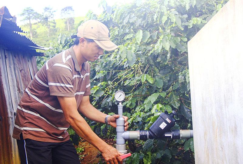 Năng suất vườn cà phê Khe Sanh tăng nhờ áp dụng tưới nhỏ giọt theo công nghệ Israel